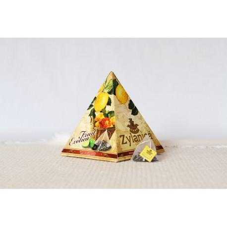 CITRON, LIMETKA a OKVĚTNÍ LÍSTKY pyramidy