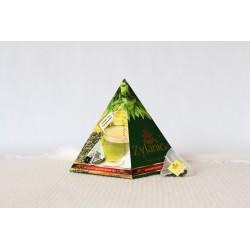 GUNPOWDER pyramidy